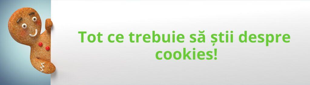 <title>Politica de Cookie-uri</title> 2